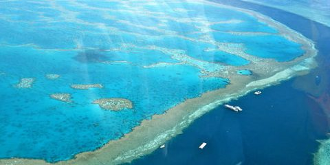 amazing_great_barrier_reef_1