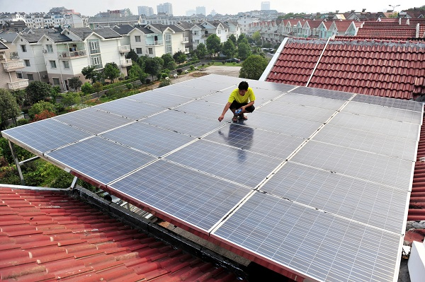 """""""Scientists explore growing solar panels from bacteria """""""